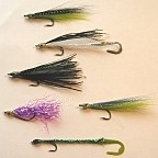 DLs Stripers and Bluefish - 6 Pack - Saltwater Flies